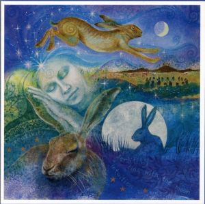Hare Dreaming